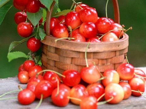 5 loại quả màu đỏ giúp ích cho sức khỏe - Ảnh 1.