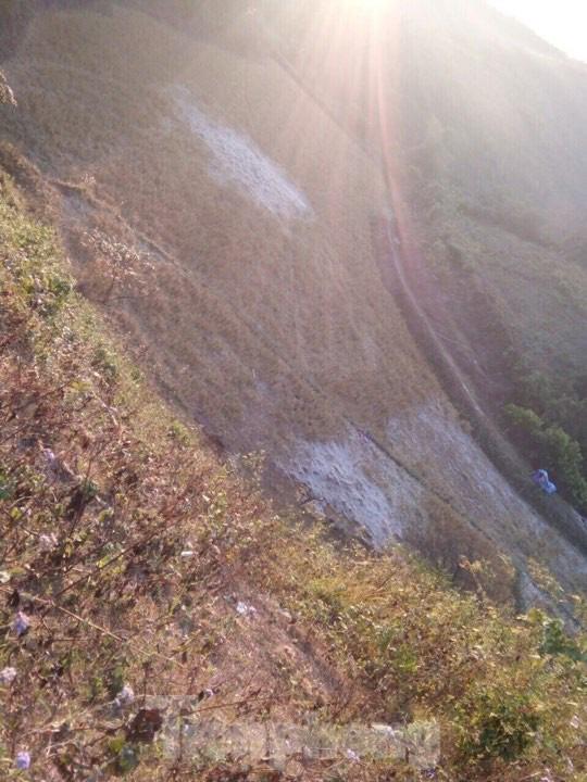 Rét đậm, sương muối phủ trắng cánh đồng và cây cối ở Lạng Sơn - Ảnh 3.