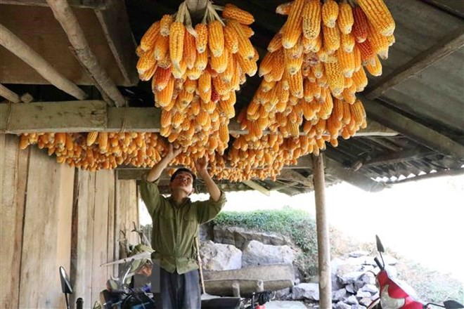 Cuộc sống của người dân tại bản không rượu, bia ở Lai Châu - Ảnh 1.