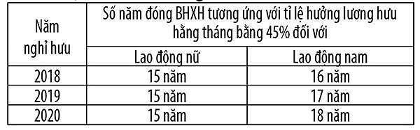 Cách tính lương hưu cho người tham gia BHXH tự nguyện - Ảnh 1.