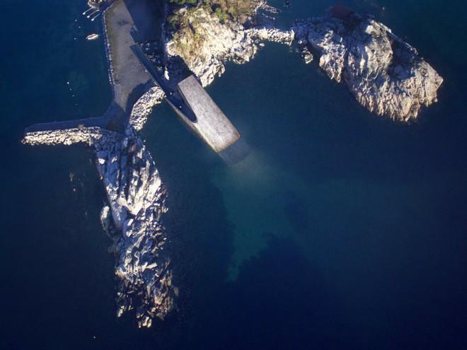Bên trong nhà hàng dưới nước lớn nhất thế giới, nơi thực khách ngắm sinh vật biển đang bơi trong khi thưởng thức hải sản - Ảnh 5.