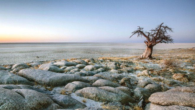 Choáng với sự sống đẹp huy hoàng tại chảo muối được mệnh danh là Vùng đất chết - Ảnh 1.