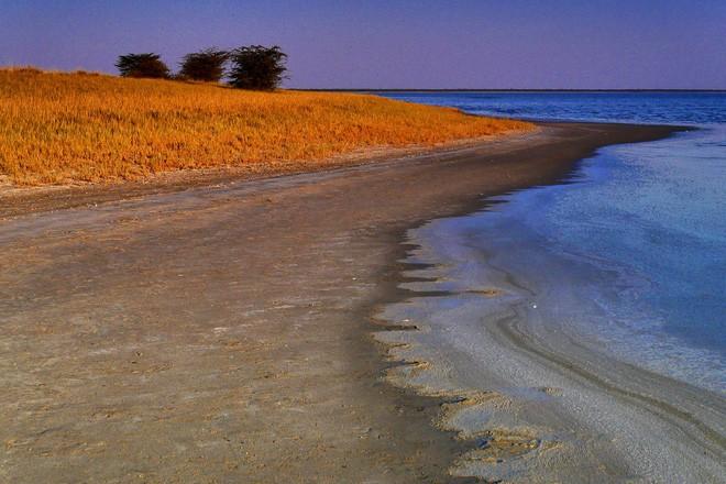 Choáng với sự sống đẹp huy hoàng tại chảo muối được mệnh danh là Vùng đất chết - Ảnh 10.