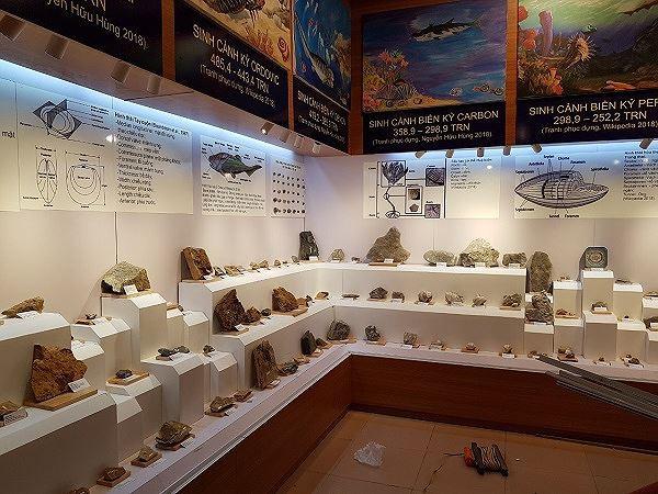 Những mẫu sinh vật rực rỡ trên cao nguyên đá Đồng Văn - Ảnh 10.