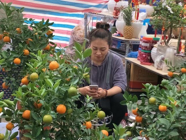 Tiểu thương chợ hoa lâu đời nhất Hà Nội ngao ngán vì ế ẩm - Ảnh 1.