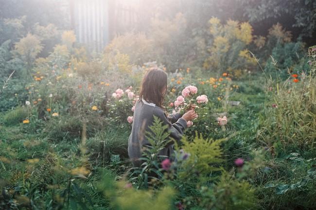 Thăm khu vườn bình yên bên hoa lá rộng 25.000m² và ngôi nhà bình dị của cô gái độc thân ở vùng nông thôn - Ảnh 1.