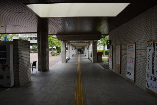 15 phát minh đỉnh cao ở Nhật Bản khiến bạn nhận ra chúng ta và họ dường như cách nhau cả thế kỷ - Ảnh 5.