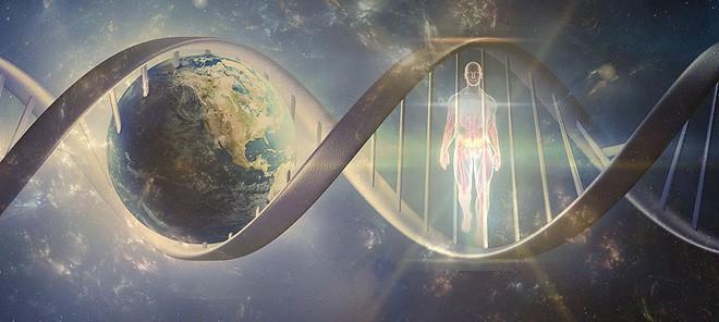 Đây là phần bất tử của con người, ngay cả khi thi thể đã phân hủy - Ảnh 1.