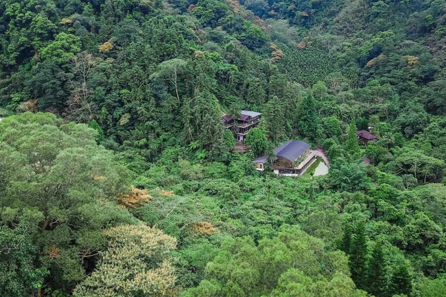 Vị giáo sư độc thân sở hữu ngôi nhà kính trong thung lũng 12.000m² với cuộc sống khó ai tin được - Ảnh 6.