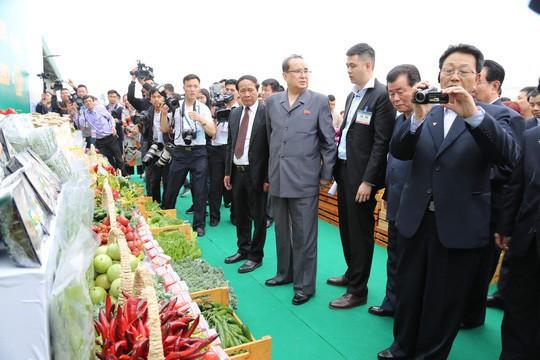 Doanh nghiệp Việt kể chuyện xuất khẩu nước giải khát, xà bông sang Triều Tiên  - Ảnh 1.