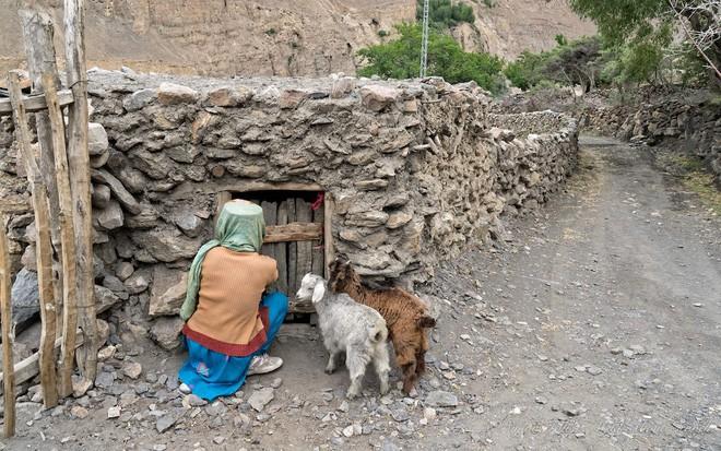 Ngôi làng kỳ lạ tại Pakistan: Phụ nữ muốn leo núi đến kiệt quệ mới thấy hạnh phúc - Ảnh 1.