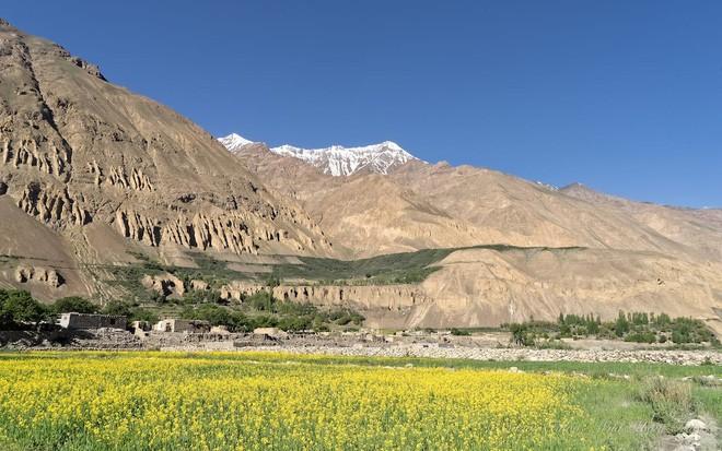 Ngôi làng kỳ lạ tại Pakistan: Phụ nữ muốn leo núi đến kiệt quệ mới thấy hạnh phúc - Ảnh 2.
