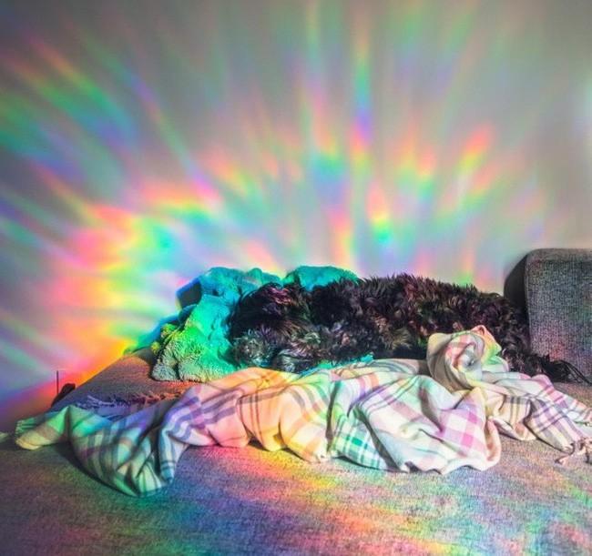 Chùm ảnh thật giả lẫn lộn khiến người xem phải vắt óc suy nghĩ để phân biệt, khuyến cáo không nên xem lúc buồn ngủ - Ảnh 15.
