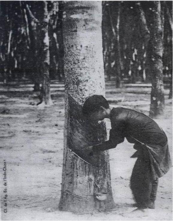 Sau Thế chiến 2, Pháp tổn thất nặng nề nên càng tăng cường bóc lột nước ta - Ảnh 4.