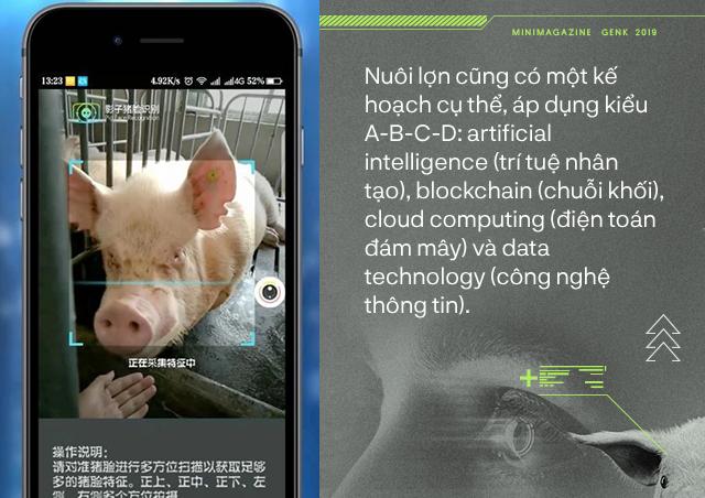 Trung Quốc chống lại dịch tả lợn châu Phi bằng công nghệ nhận diện mặt lợn như thế nào? - Ảnh 2.