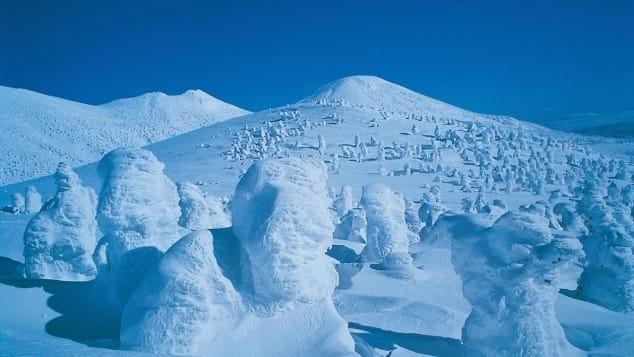 Aomori: Cuộc sống ở thành phố trắng nhất hành tinh, tuyết rơi chôn vùi nhà 2 tầng - Ảnh 3.