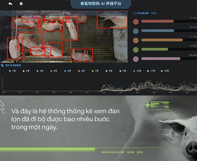 Trung Quốc chống lại dịch tả lợn châu Phi bằng công nghệ nhận diện mặt lợn như thế nào? - Ảnh 5.