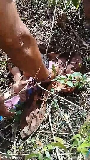 Nghe tiếng khóc trong rừng giữa cái nắng 33 độ C, người dân phát hiện tội ác kinh hoàng - Ảnh 2.