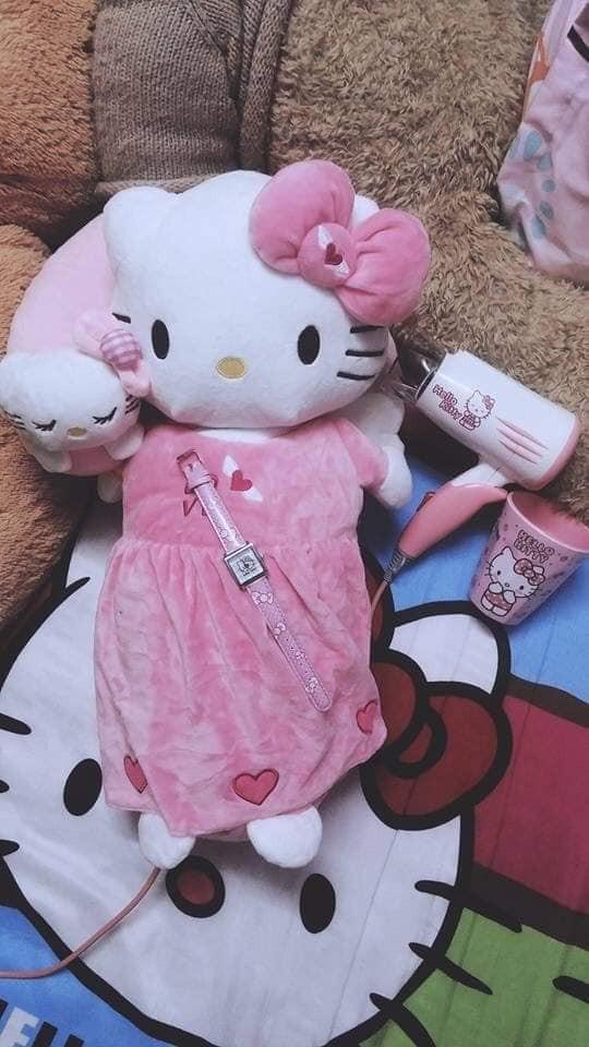 Cô gái cuồng Kitty: Thiệp cưới in hình Kitty hồng còn 'lầy lội' mong quý khách tặng quà Hello Kitty thay cho mừng phong bì - Ảnh 4.