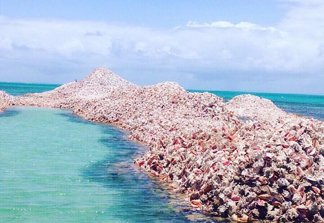 Đây là hòn đảo nhân tạo có một không hai trên thế giới: toàn bộ được làm từ vỏ ốc xà cừ chất thành đống - Ảnh 4.