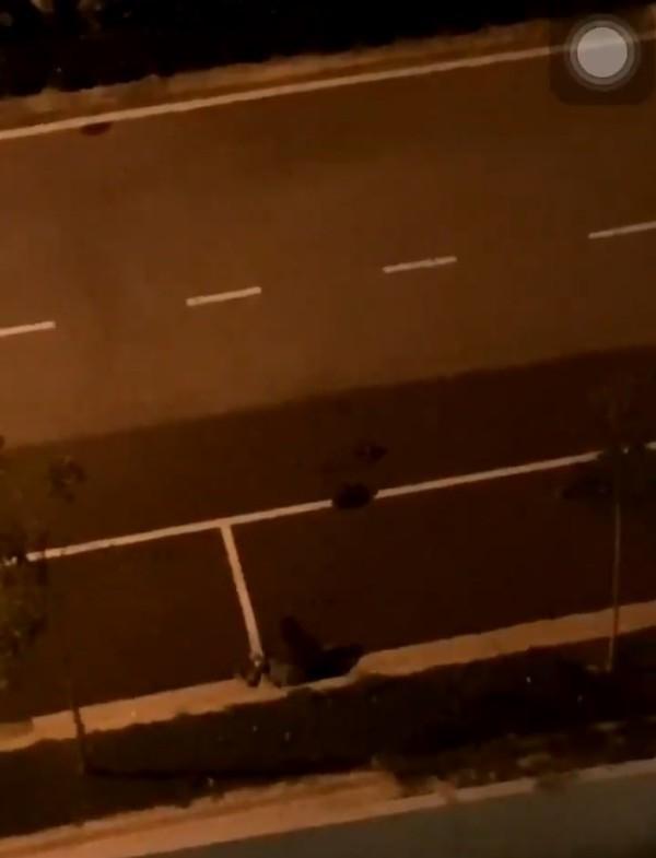 Thanh niên đâm xe vào bạn gái giữa đường vì tranh cãi nhỏ khiến dân tình bức xúc - Ảnh 1.