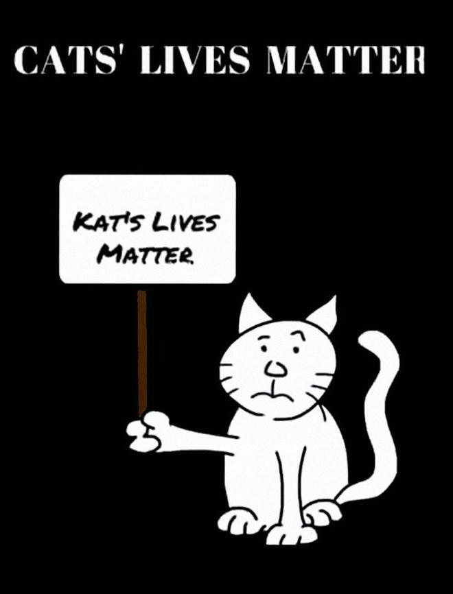 Nhà mạng Mỹ đình chỉ nhân viên cứu mèo bằng xe thang, Internet quyên góp luôn 80 triệu để an ủi - Ảnh 5.