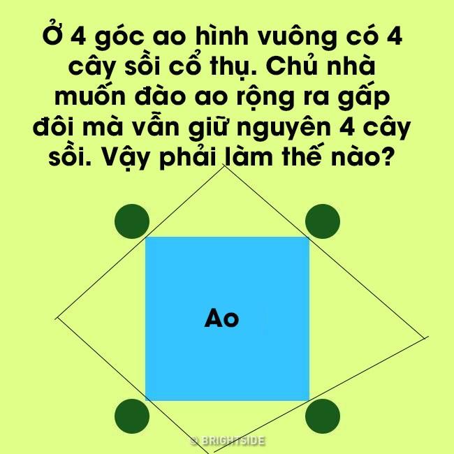 Vừa đào ao vừa muốn giữ vật: Câu đố hóc búa mà đáp án lại dễ đến bất ngờ - Ảnh 3.