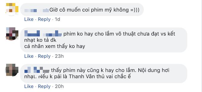 Chiêu cao của Ngô Thanh Vân: Điều gì ẩn sau vụ Hai Phượng vươn ra Hollywood nhưng nhiều fan Việt vẫn chê dở? - Ảnh 2.