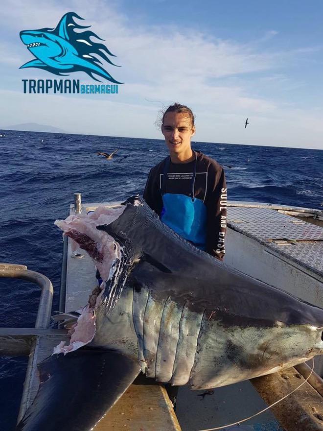 Ngư dân vừa câu được cá mập thì bị thủy quái từ đâu đến giành mất luôn một nửa - Ảnh 1.