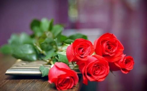 Tuyển tập lời chúc 8/3 hay, ý nghĩa dành tặng cho những người phụ nữ thân yêu - Ảnh 2.