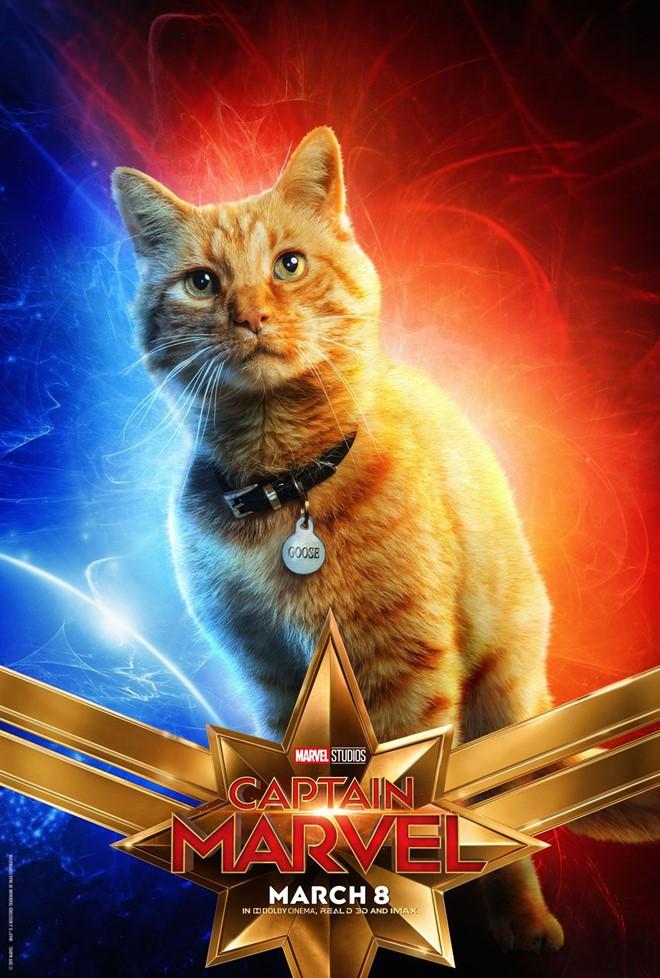 Không phải Captain Marvel, chú mèo dễ thương mới là chìa khóa đánh bại Thanos? - Ảnh 5.