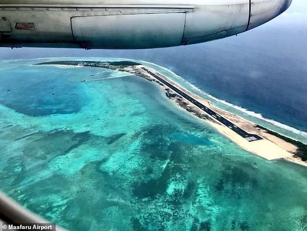 Xót xa cảnh tượng rùa hiếm Maldives lặn lội về quê đẻ trứng, nào ngờ tổ đã biến thành đường băng sân bay - Ảnh 3.