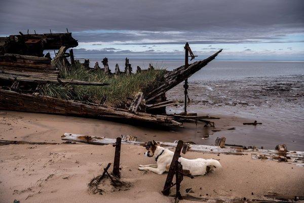 Khám phá ngôi làng Nga 'biến mất' mỗi khi gió to, người dân không ai dám đóng cửa vào ban đêm - Ảnh 11.