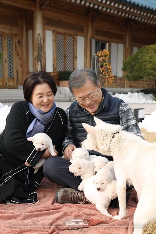 Chuyện tình chông gai của Tổng thống Hàn Quốc và nữ ca sĩ quyết từ bỏ showbiz vì chồng - Ảnh 8.