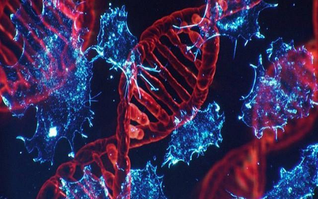 Đây là những trường hợp có nguy cơ mắc bệnh ung thư gan rất cao, số 3 nhiều người mắc phải - Ảnh 1.