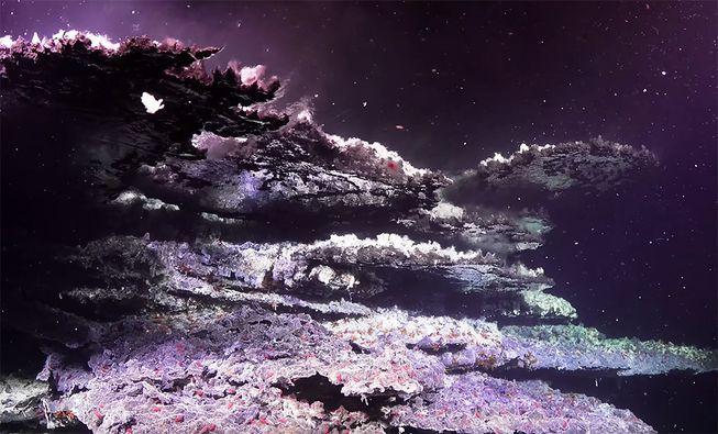 Tháp hồng soi bóng hồ gương dưới đáy biển: Kỳ quan tuyệt đẹp mới được tìm ra tại California - Ảnh 5.