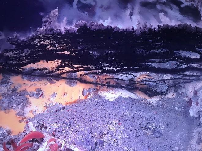 Tháp hồng soi bóng hồ gương dưới đáy biển: Kỳ quan tuyệt đẹp mới được tìm ra tại California - Ảnh 8.