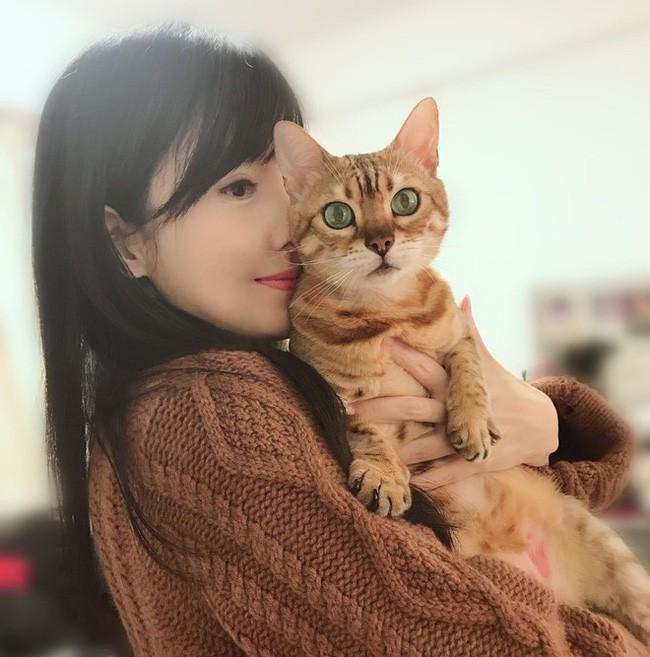 Ngọc nữ Châu Huệ Mẫn gây tranh cãi với tuyên bố: Thà nuôi 20 con mèo còn hơn sinh con  - Ảnh 3.