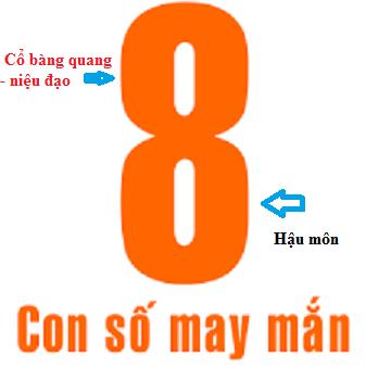 Quy tắc con số 8: Giúp cho đàn ông kéo dài quan hệ, phụ nữ dễ lên đỉnh - Ảnh 1.
