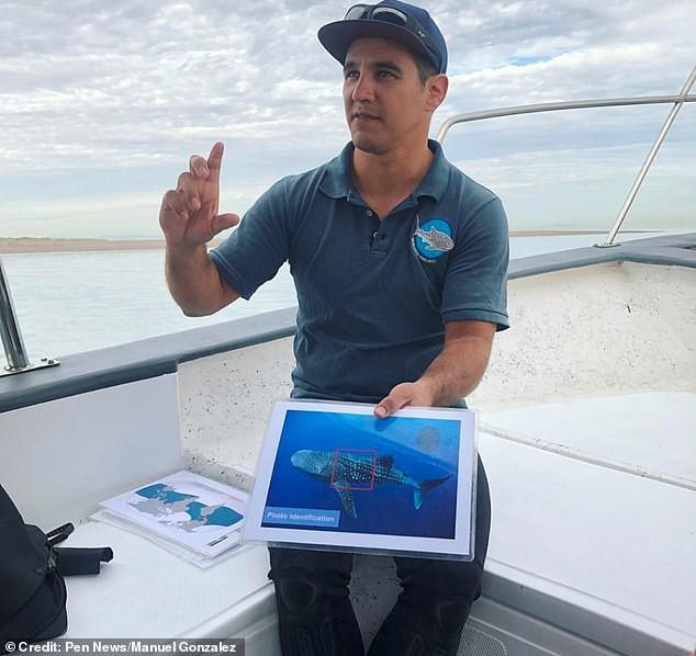 Quái thú biển xanh gây kinh hoàng cho đại dương xuất hiện: Có video bằng chứng; rất hiếm - Ảnh 5.