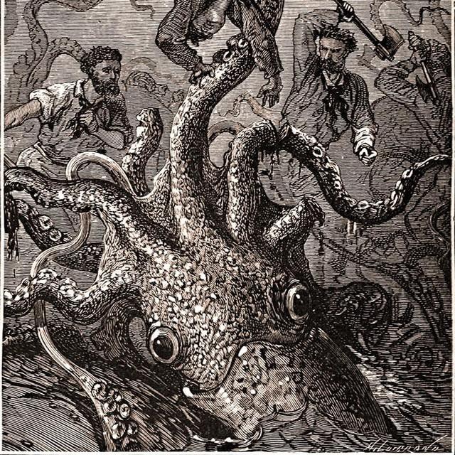 Kraken: Quái vật biển huyền thoại trong truyền thuyết Bắc Âu - Ảnh 6.