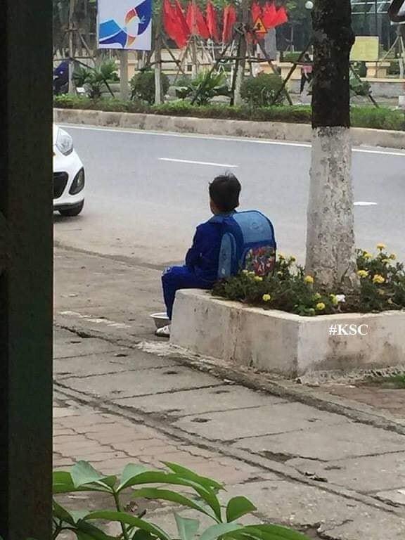 Bé trai ngồi bên đường, bán cà chua không có tâm và lí do phía sau khiến dân mạng bật cười - Ảnh 1.