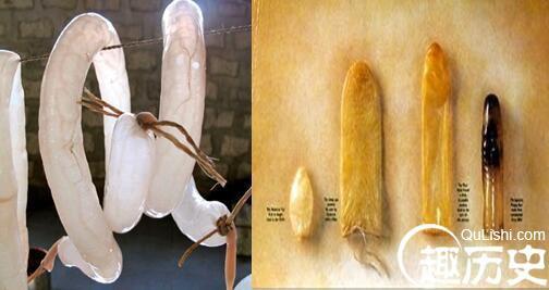 Bao cao su - từ cổ chí kim ai cũng thích, cũng cần và những sự thật thú vị bên trong - Ảnh 4.