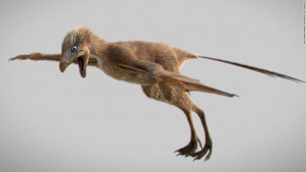Phát hiện hoá thạch khủng long có cánh tại Trung Quốc - Ảnh 1.