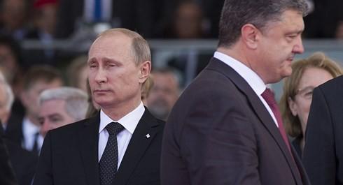 Cố vấn an ninh cho TT Zelensky tuyên bố tiếp tục chính sách chiến tranh với Nga - Ảnh 3.