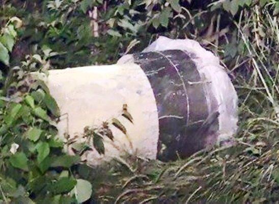 Rùng mình trước kết quả khám nghiệm 2 thi thể bị đúc trong thùng bê tông - Ảnh 1.
