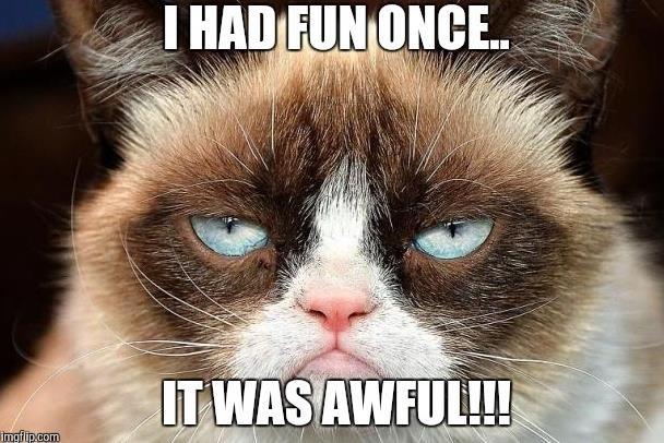 Grumpy Cat - cô mèo cáu kỉnh nhất thế giới với hơn 8 triệu người theo dõi đã qua đời - Ảnh 1.