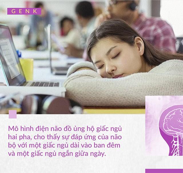 Đọc cuối tuần: Con người có thể ngủ 2 tiếng mỗi ngày để sống nhiều hơn 10 năm cuộc đời hay không? - Ảnh 9.