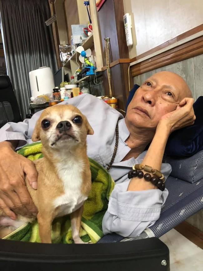 Rơi nước mắt với hình ảnh chú cún nhỏ buộc khăn tang trắng, quanh quẩn không rời bên linh cữu cố nghệ sĩ Lê Bình  - Ảnh 12.