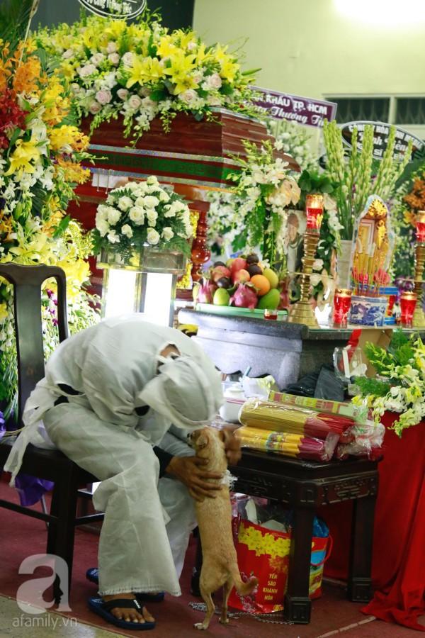 Rơi nước mắt với hình ảnh chú cún nhỏ buộc khăn tang trắng, quanh quẩn không rời bên linh cữu cố nghệ sĩ Lê Bình  - Ảnh 5.